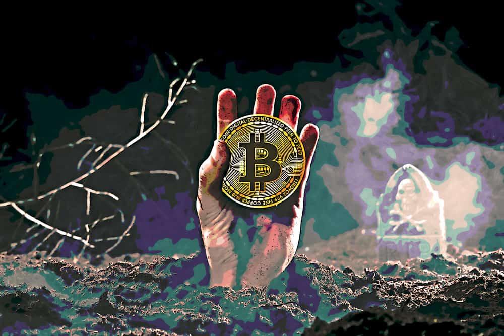 bitcoin flashback