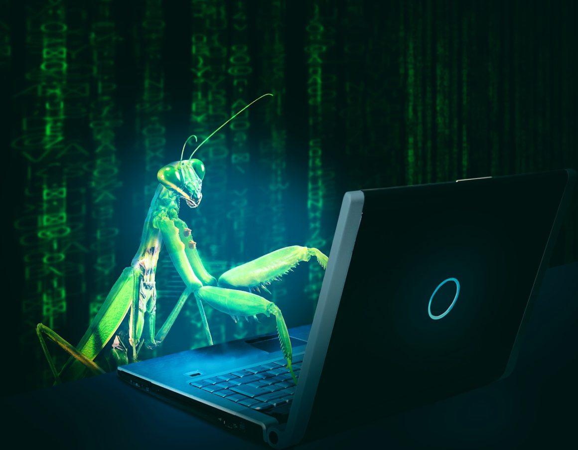 Mantis using laptop