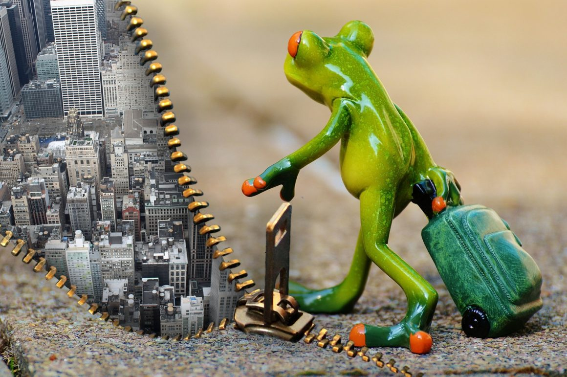 Model of a frog with carriage zipping a zipper to cover New York