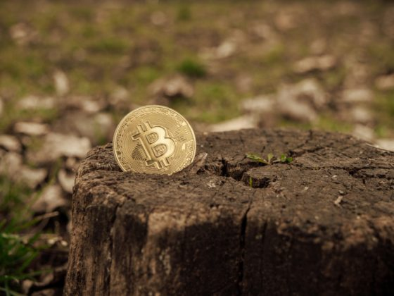 Bitcoin stuck in a tree stump | Bitcoin is still mined using coal power in some nations