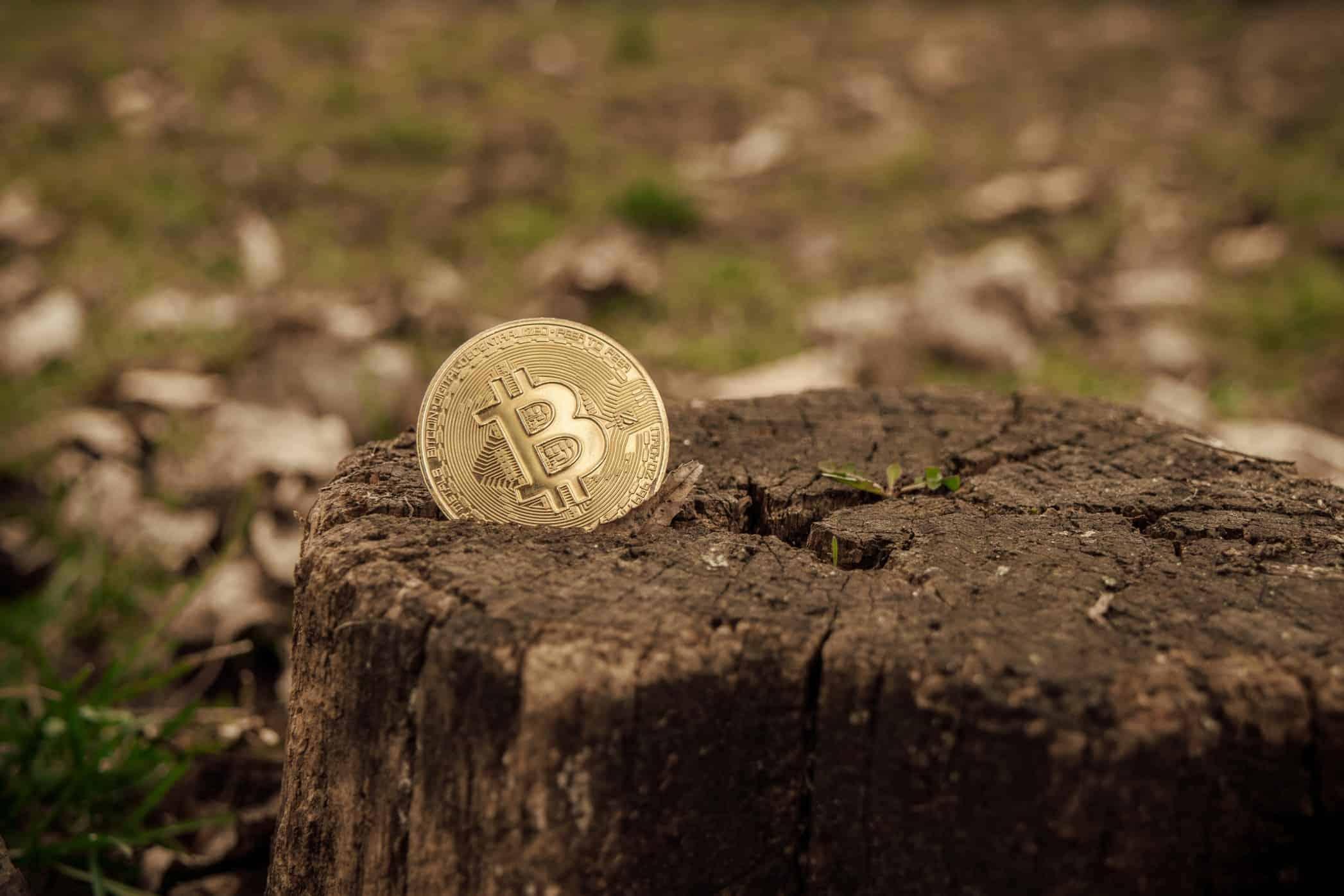 Three Environmental Myths About Bitcoin Debunked