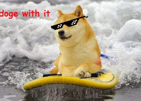 Dogecoin surfs through price waves over the weekend