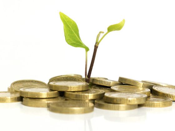 Plant sprouting out of money as institutional investment in crypto continues to grow