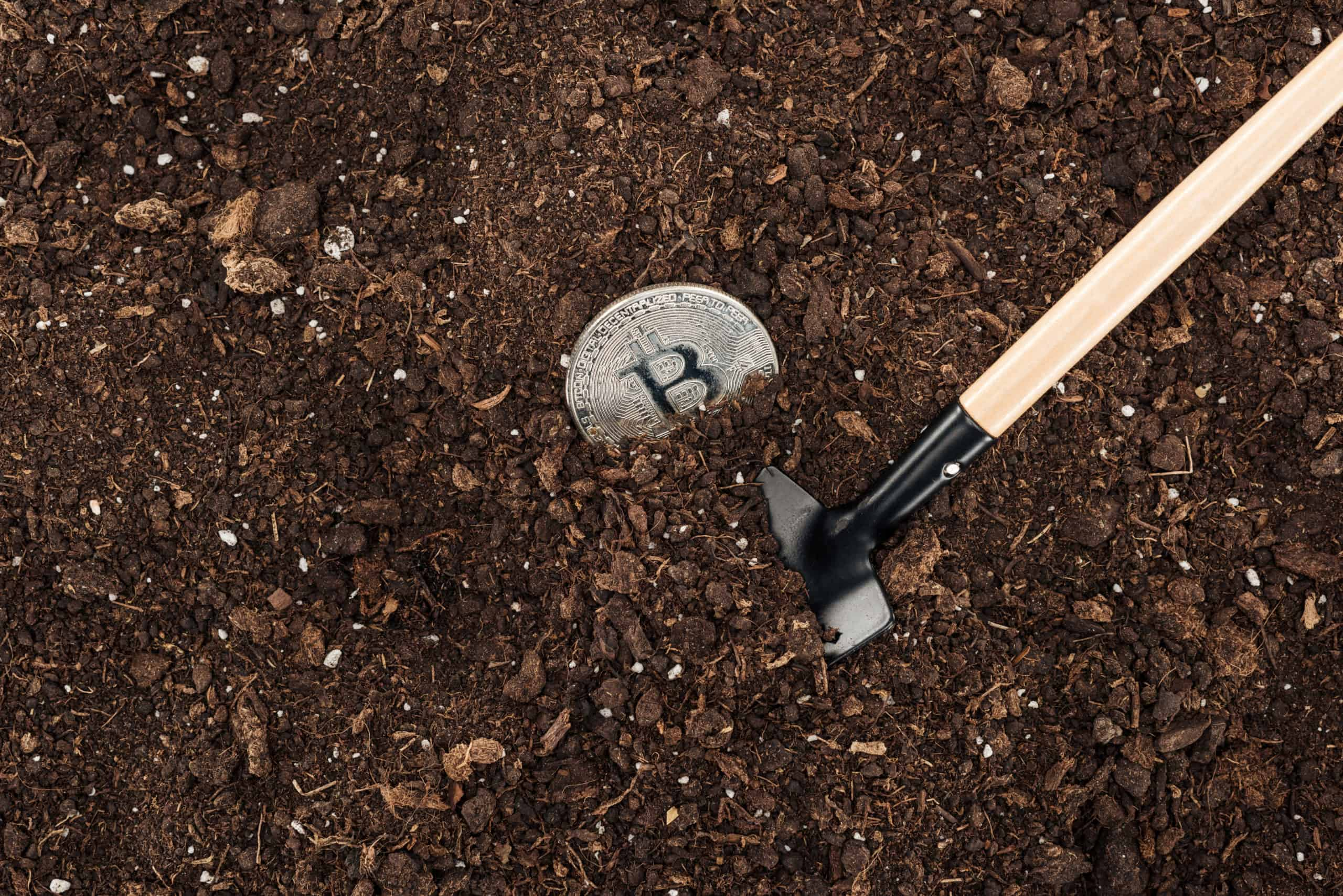 small shovel near bitcoin in ground protecting nat FY2NUQX scaled