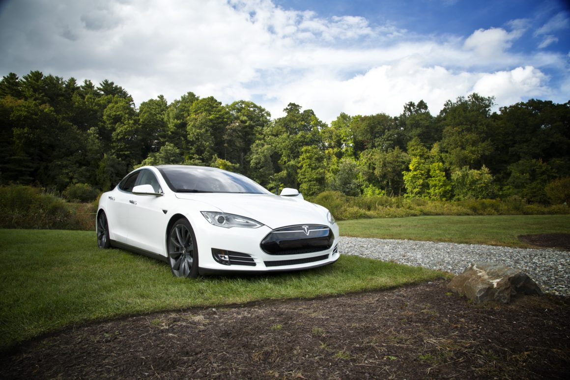 Tesla in the middle of the forest