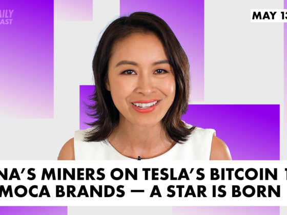 China's miners on Tesla's Bitcoin 180; Animoca Brands a star is born The Daily Forkast