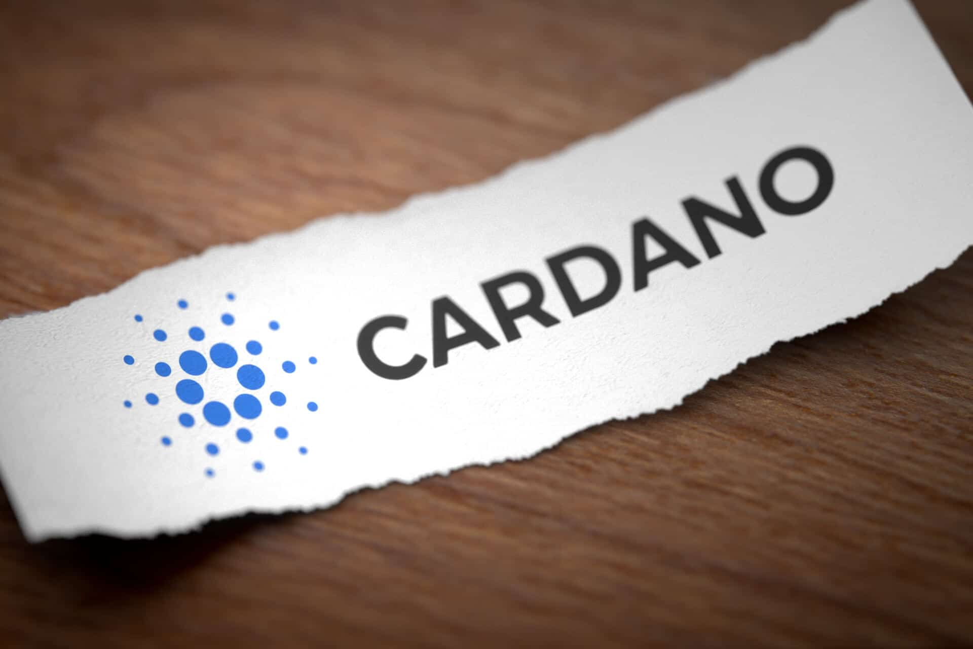 cardano torn paper wo