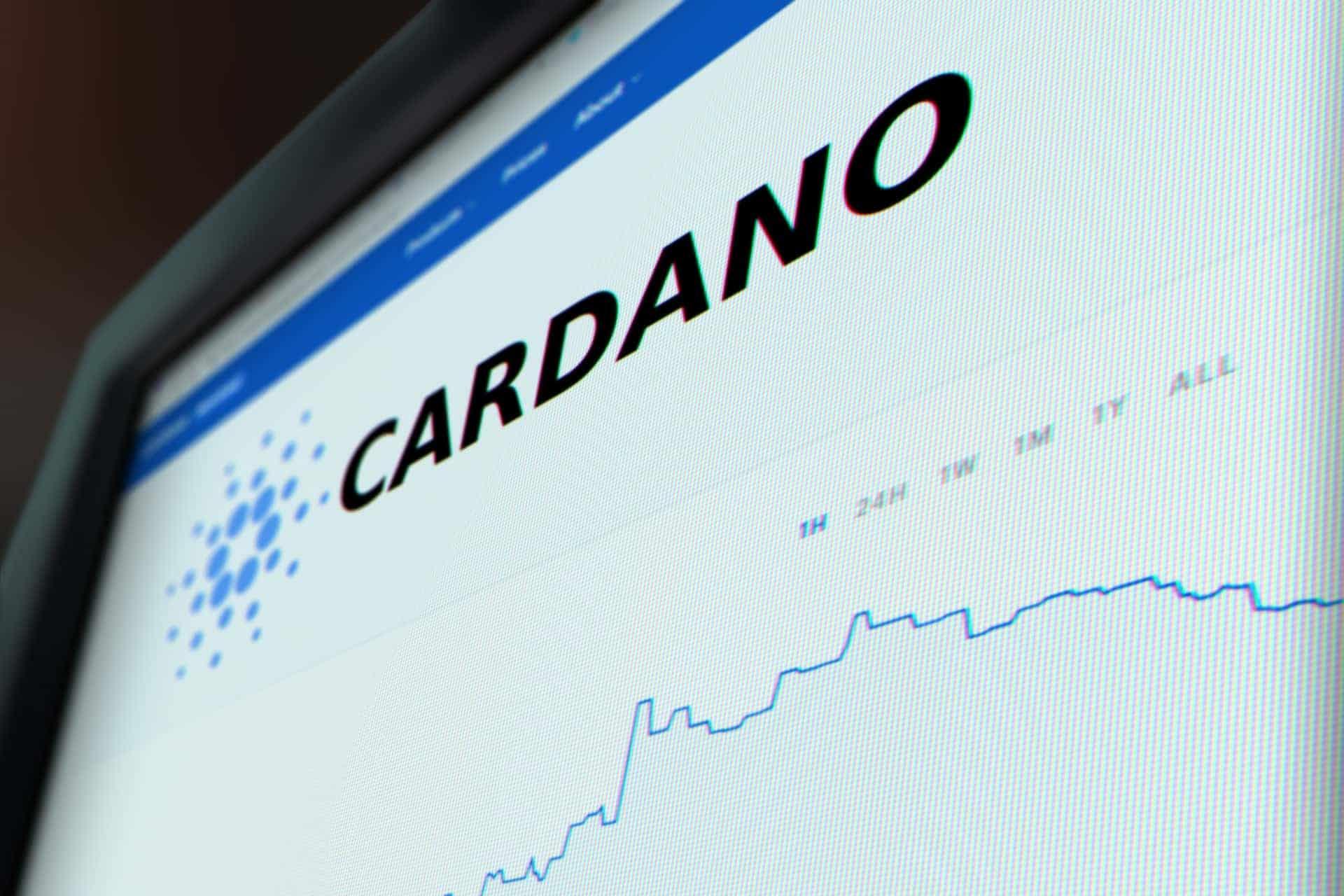 monitor cardano stock