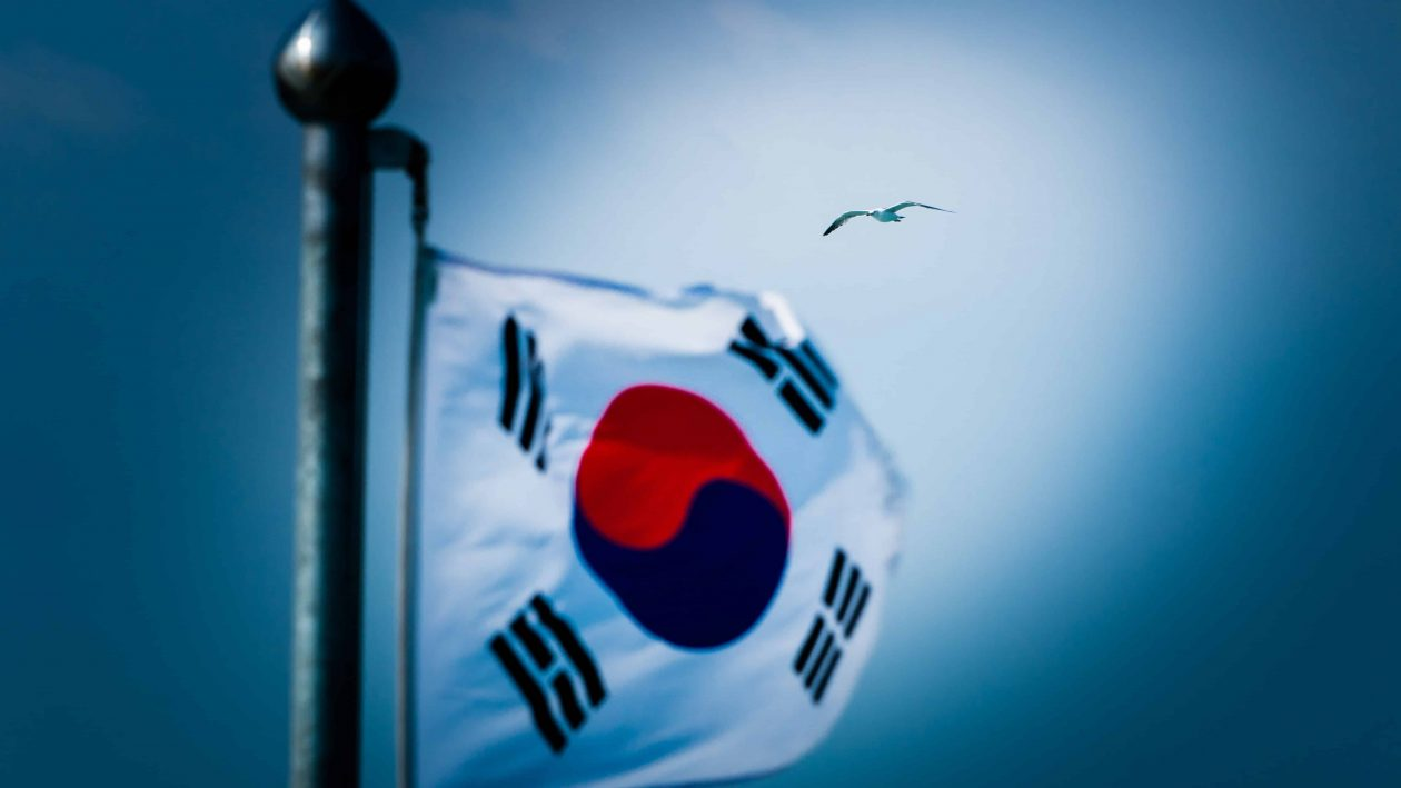 The South Korean Flag in a dark sky with a seagull flying behind   14 fake accounts by exchanges busted in South Korea
