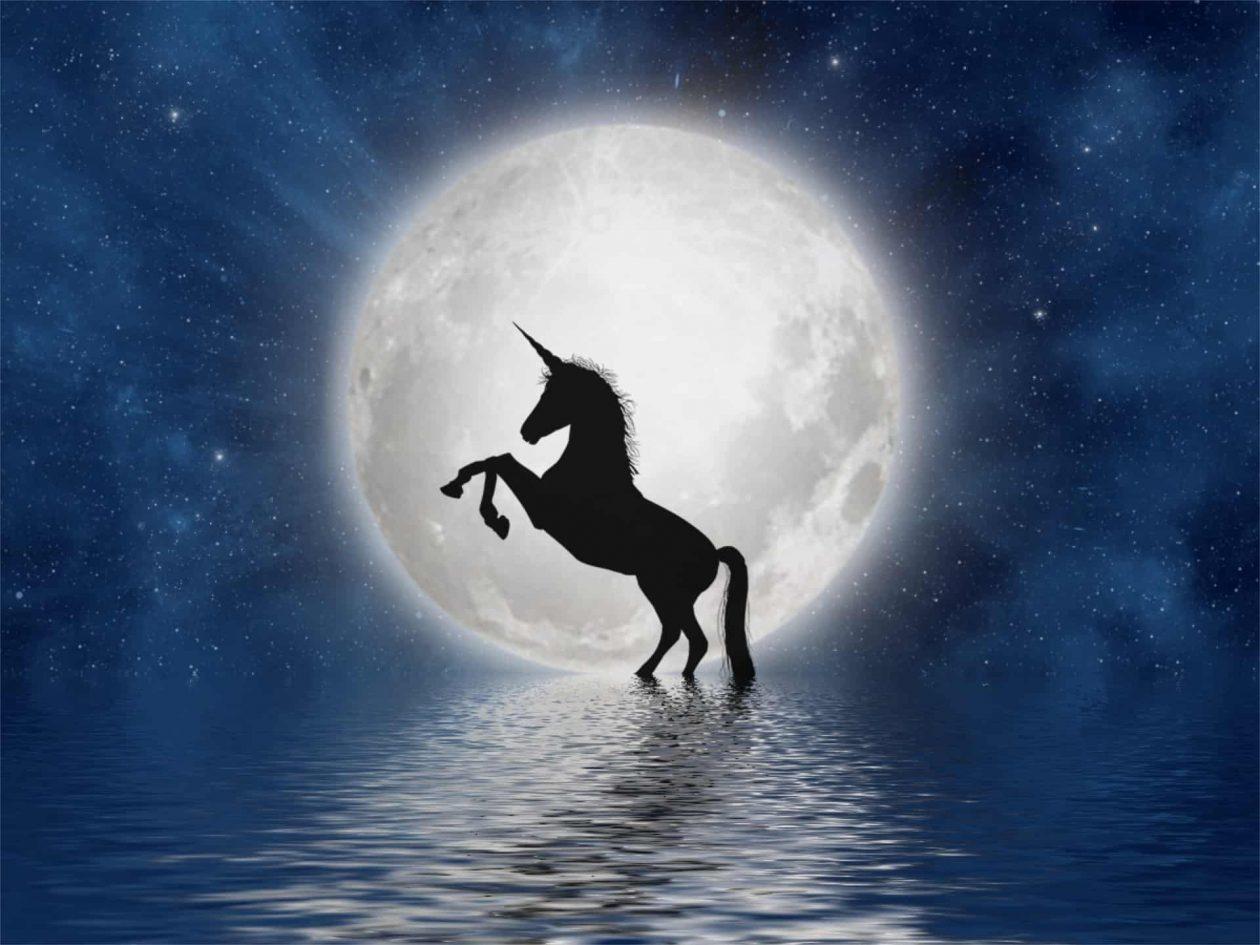 unicorn full moon
