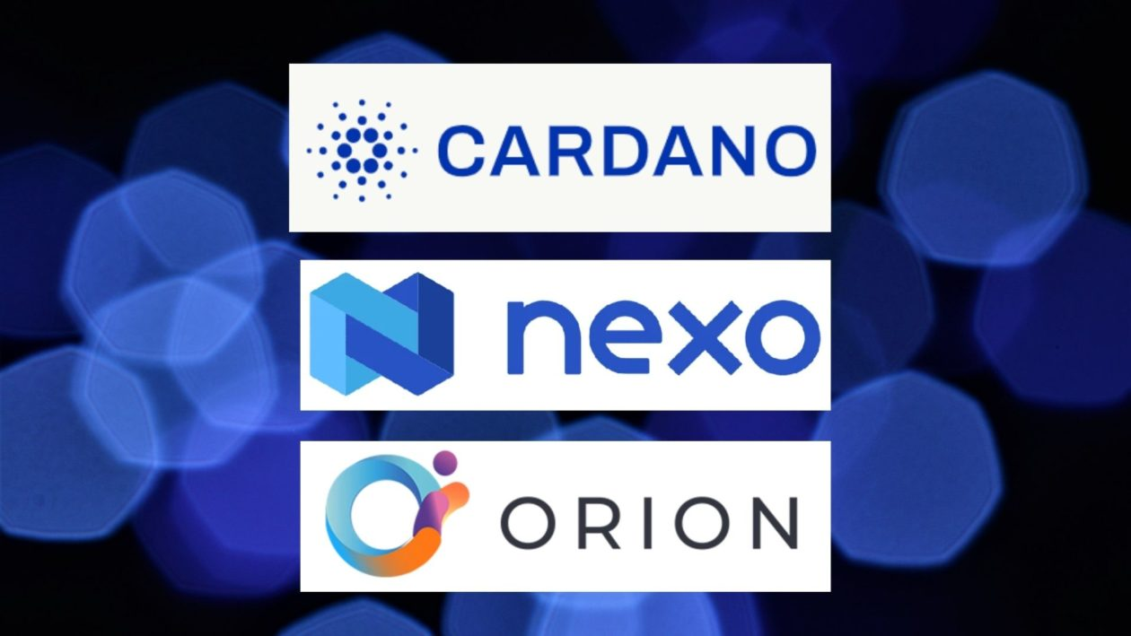 Cardano, Nexo and Orion Protocol logos