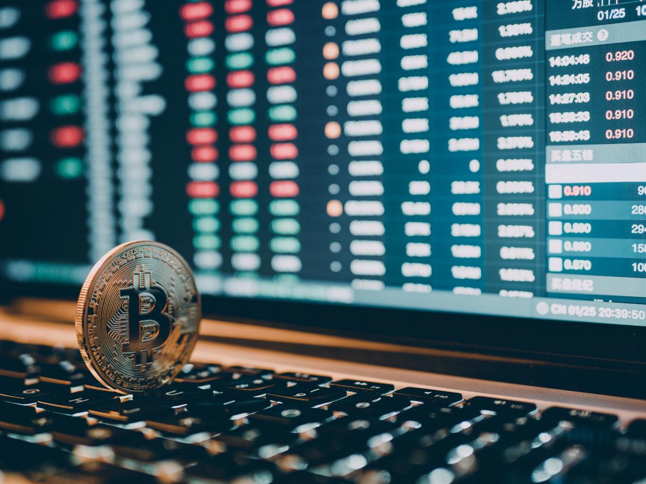 Google search bitcoin price fell